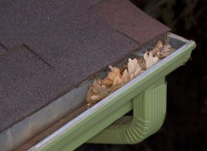 Clean Gutters During the Fall